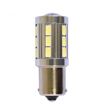 Pirn 24V LED 241 P21W