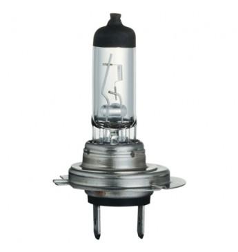 Light bulb 12v 55w H7 Px26d Halogen Hea